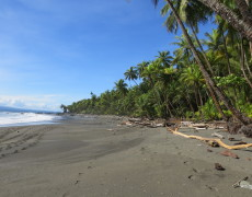 Pavones, Costa Rica and the Golfo Dulce